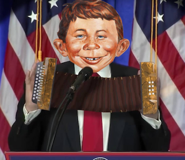 Just some accordion player